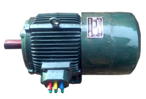 Slip Ring Induction Motors Mumbai India